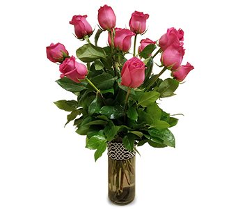 One Dozen Hot Pink Roses in Fort Worth TX, Mount Olivet Flower Shop