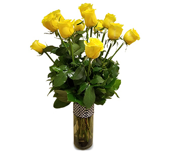One Dozen Yellow Roses in Fort Worth TX, Mount Olivet Flower Shop