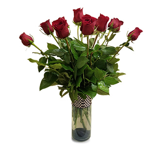 One Dozen Red Roses in Fort Worth TX, Mount Olivet Flower Shop