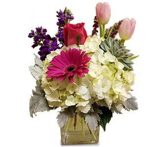 Dance With Me in Fort Worth TX, Greenwood Florist & Gifts
