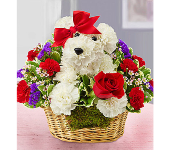 Love Pup in Watertown CT, Agnew Florist