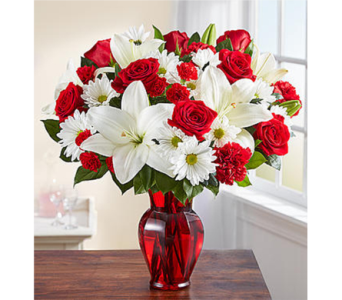 Red & White Delight in Watertown CT, Agnew Florist