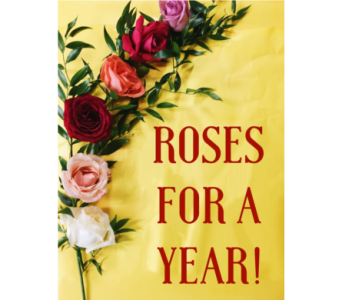 YEAR OF ROSES in Greenville SC, Expressions Unlimited