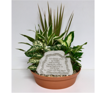 Our Family Chain Stone Dish Garden-12 inch Planter in Wyoming MI, Wyoming Stuyvesant Floral