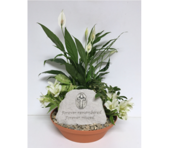 Forever Remembered Dish Garden - 10 inch Planter in Wyoming MI, Wyoming Stuyvesant Floral