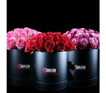 Stapleton''s Exclusive Hat Box Roses in Boston MA, Stapleton Floral