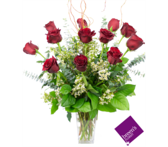 Royal Roses - 1 Dozen Red in Houston TX, Breen's Clear Lake Flowers