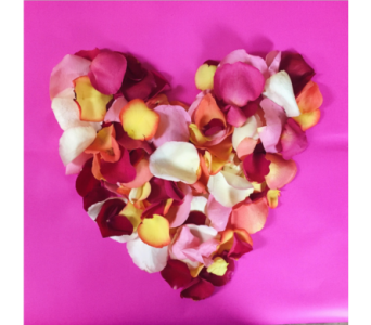 ROSE PETALS in Greenville SC, Expressions Unlimited