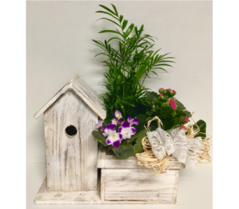 Birdhouse Dish Garden with Lace and Raffia in Wyoming MI, Wyoming Stuyvesant Floral