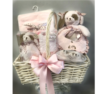 Bearington Baby Girl Gift Basket in Dayton OH, Furst The Florist & Greenhouses