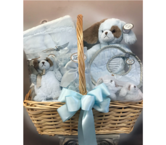 Bearington Baby Boy Gift Basket in Dayton OH, Furst The Florist & Greenhouses