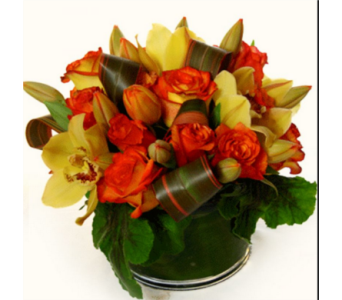 Orange Array in Gaithersburg MD, Flowers World Wide Floral Designs Magellans