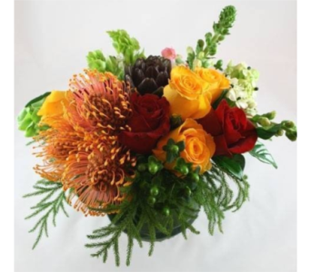 Protea Pop in Gaithersburg MD, Flowers World Wide Floral Designs Magellans