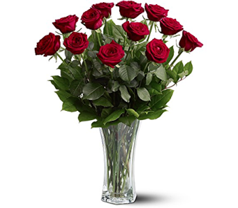 A Dozen Red Roses in Inver Grove Heights MN, Glassing Florist
