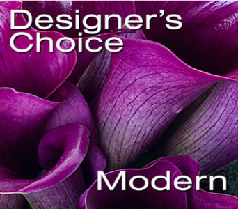 Designers Choice - Modern in Blue Springs MO, Village Gardens