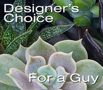 Designers Choice - For Him in Blue Springs MO, Village Gardens