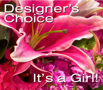 Designers Choice - New Baby Girl in Blue Springs MO, Village Gardens