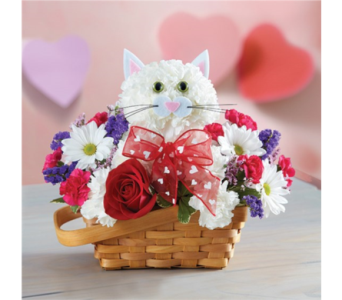 Flirty Feline in Pittsburgh PA, Eiseltown Flowers & Gifts