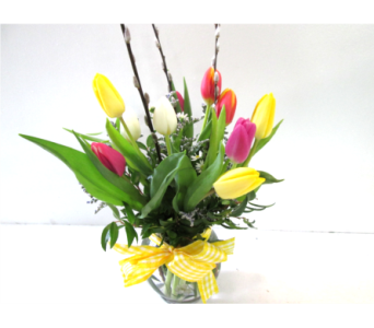 Tulip Bowl in Worcester MA, Holmes Shusas Florists, Inc
