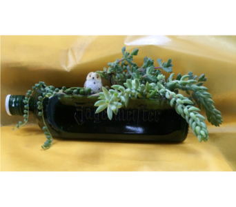 J�germeister Bottle Succulent Garden with Owl in Muskegon MI, Barry's Flower Shop