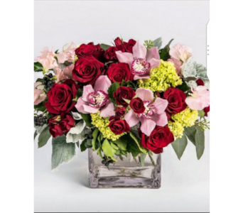 True Love in Etobicoke ON, Alana's Flowers & Gifts