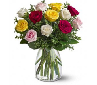 MIXED ROSES in Owensboro KY, Welborn's Floral Company