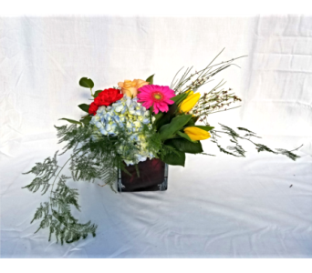 Low, Lush & Luxurious in New Ulm MN, A to Zinnia Florals & Gifts
