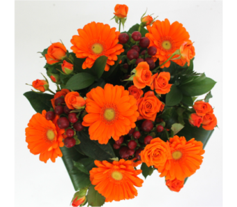 Orange Dream Bouquet  in Grimsby ON, Cole's Florist Inc.