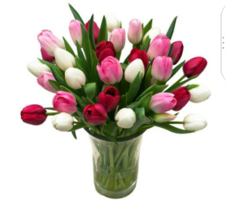 Mix Tulips In Vase in Etobicoke ON, Alana's Flowers & Gifts