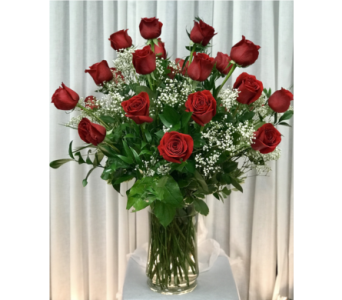 24 Red Roses with Babies Breath in Naples FL, Gene's 5th Ave Florist