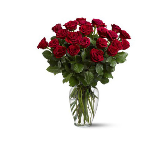 Two Dozen Red Roses in Metairie LA, Villere's Florist