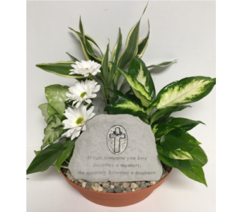 Treasured Memories Stone Dish Garden - 10 inch in Wyoming MI, Wyoming Stuyvesant Floral
