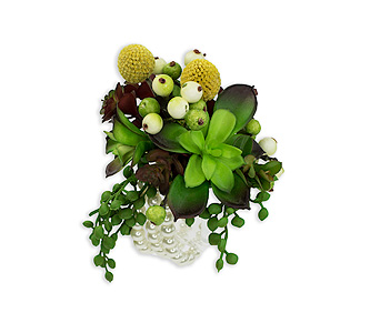 Organic Wrist Corsage in Mattoon IL, Lake Land Florals & Gifts