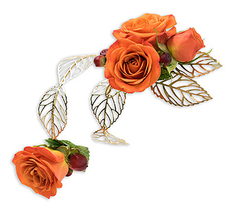 Tangerine Arm Band in Green Bay WI, Enchanted Florist