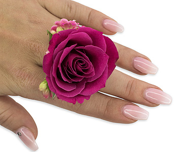 Fuchsia Floral Ring in Traverse City MI, Teboe Florist