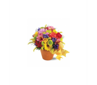 Fresh Blossom Potpourri in Gaithersburg MD, Flowers World Wide Floral Designs Magellans