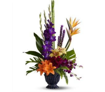 Paradise Blooms in Gaithersburg MD, Flowers World Wide Floral Designs Magellans