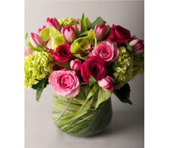 Alyce in Gaithersburg MD, Flowers World Wide Floral Designs Magellans