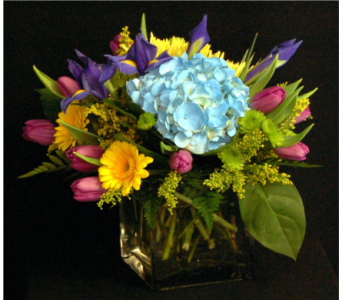 Summer Breeze in Gaithersburg MD, Flowers World Wide Floral Designs Magellans