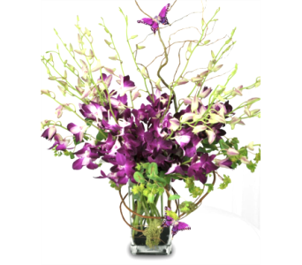 Orchids & Butterflies Bouquet in Columbia TN, Douglas White Florists