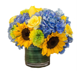Summer Sun in Gaithersburg MD, Flowers World Wide Floral Designs Magellans