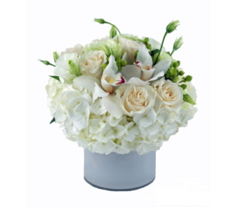 Blanca in Gaithersburg MD, Flowers World Wide Floral Designs Magellans