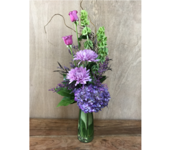 THE VIOLET BEAUTY in Napa CA, Garaventa Florist