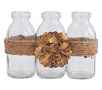 Jute & Flower Mini Glass Bottle Set of 3 in Oviedo FL, Oviedo Florist