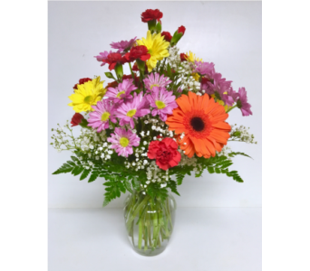 A Daisy A Day - 8 inch Vase - All-Around in Wyoming MI, Wyoming Stuyvesant Floral