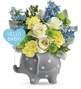 Teleflora's Hello Sweet Baby - Blue in Reno NV, Bumblebee Blooms Flower Boutique