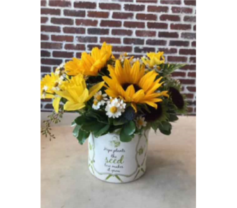 Pocket full of sunshine in Moorestown NJ, Moorestown Flower Shoppe