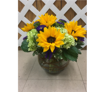 Sunflowers & Hydrangea in Purcellville VA, Purcellville Florist