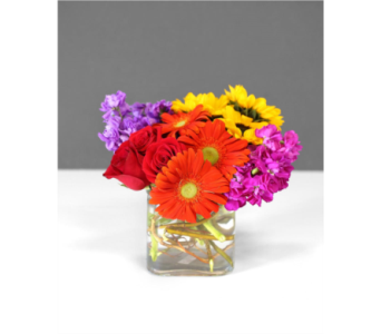Neon Summer in Gaithersburg MD, Flowers World Wide Floral Designs Magellans