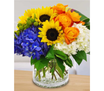 Sunshine in Gaithersburg MD, Flowers World Wide Floral Designs Magellans